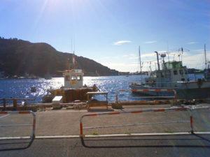 西伊豆 戸田湾 ちどり丸の係留船での釣りを攻略